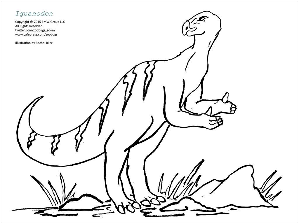 allosaurus pachycephalosaurus deinonychus coelophysis iguanodon