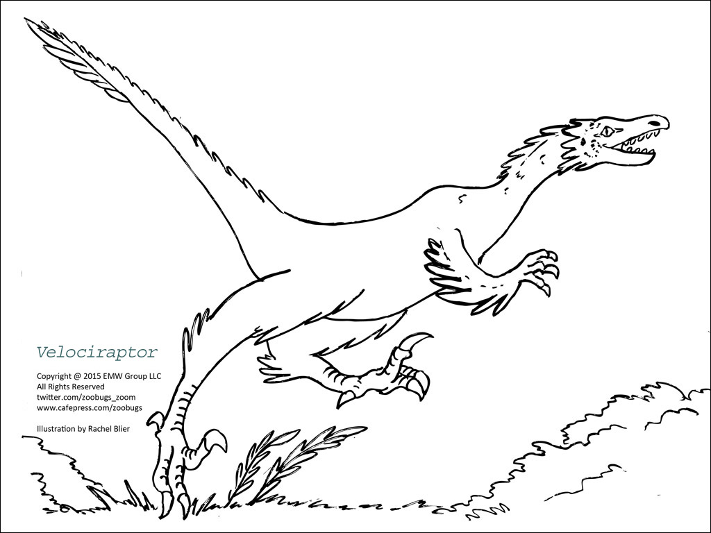 deinonychus coloring page coloring home.html