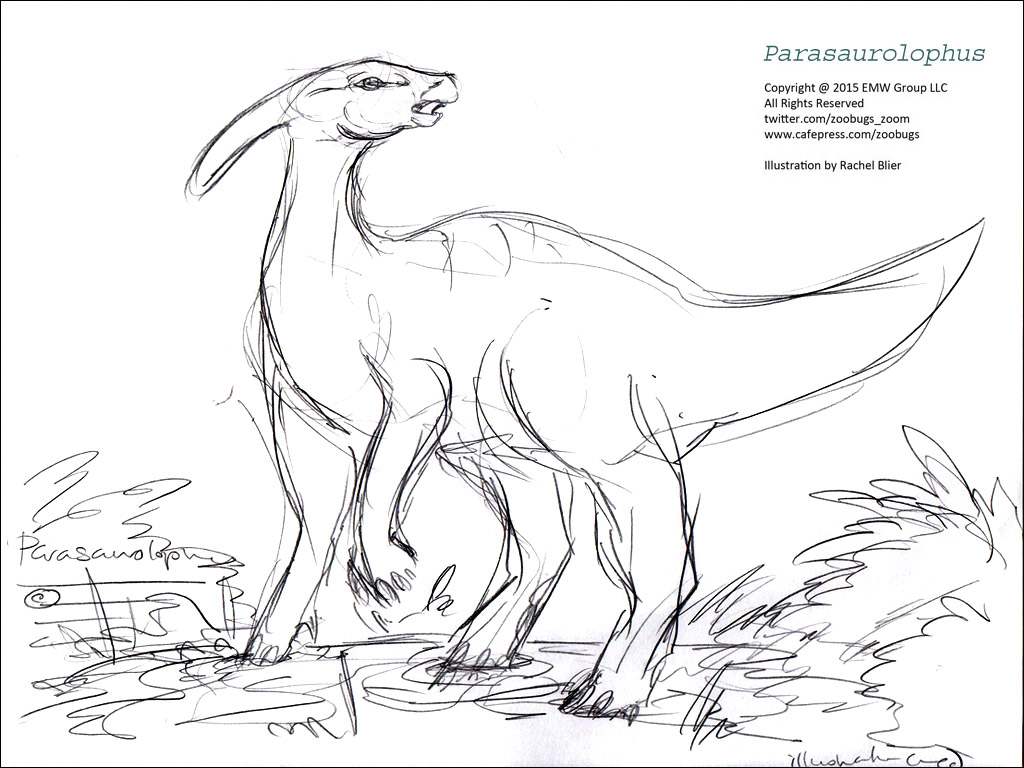 dinosaur coloring sheets 2